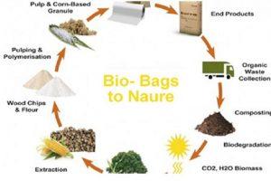 Những điều cần biết về nhựa phân hủy sinh học(Bio-Degradable plastics)